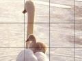 Játék Cute swans slide puzzle