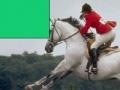 Igra Horse Jumping Jigsaw