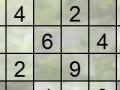 თამაშის Sudoku Falls