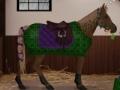 Igra Dream horse