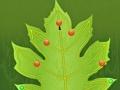 Παιχνίδι Leaf Rider