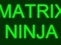 Matrix Ninja קחשמ