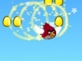 Spiel Angry birds: Rock bird