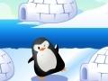Spiel Find Penguin