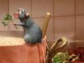 Игра Ratatouille HS