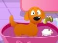 Spiel Clean My Dog