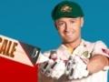 Spiel Smash 'em Cricket