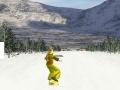 Spiel Snowboarding DX