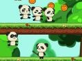 Spiel Panda Shock Troop