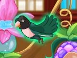 Игра My Sweet Bird