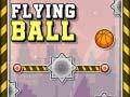 Flying Ball קחשמ