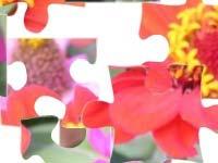 Игра Flowers 2