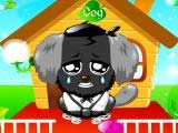 Игра Cute Pet Dog
