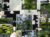 Игра White spring