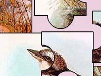 Игра Birds
