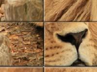 Игра Big lion