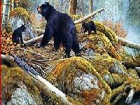 Игра Bears near the lake