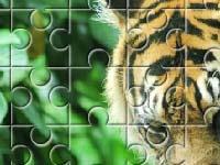 Игра Tiger