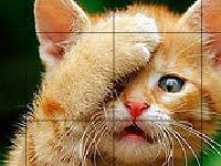 Игра Slide puzzle 8