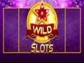 Žaidimas Wild Slot