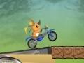 Игра Raichu Ride