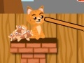 Игра Cat Food Throw