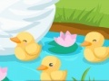 Hry Duck care