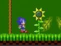 Игра Sonic Xtreme
