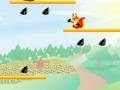 Игра Squirrel