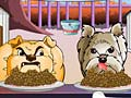 Gioco Dog Championship